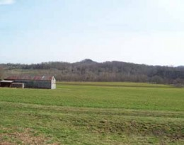 309 Acre Crop Farm in Marion County