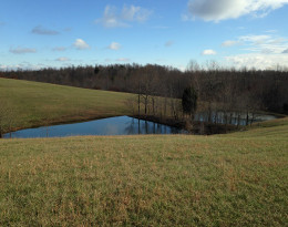48.85 Acres Located on Maple Road