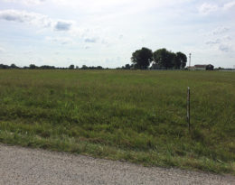 1.19 Acre Lot In Raywick