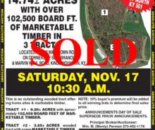 SOLD – Absolute Auction – 14 Acres With Marketable Timber
