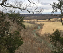 77.8 Acres M/L. Of Wooded Paradise