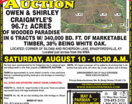 Coming Auction
