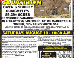 Auctions Archives - Homes and land for sale in Lebanon, KY and