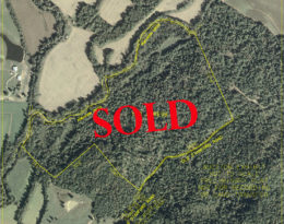SOLD – 100 Acres Of Paradise