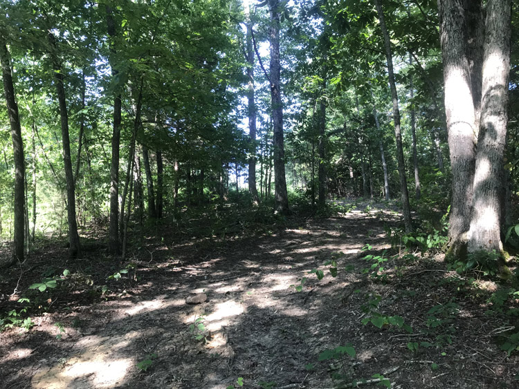 Farm 2 3 Homes And Land For Sale In Lebanon Ky And Marion County Ky May And Parman Real Estate Auctions And Insurance Homes And Land For Sale In