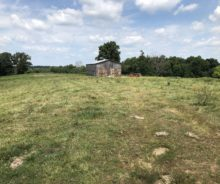 20 Acres On Riley Gravel Switch Road