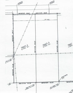 2 Lots in the Raywick Area