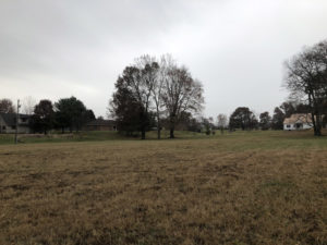 2.77 Acres In Twin Eagles Subdivision