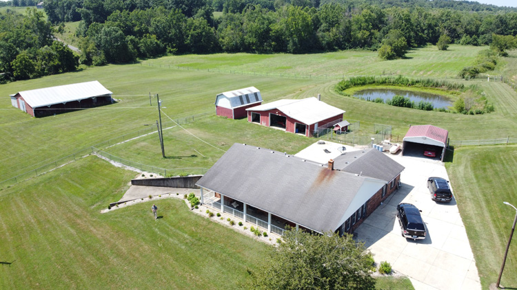 Brick Ranch Home On 5 Acres In Gravel Switch Homes And Land For Sale In Lebanon Ky And Marion County Ky May And Parman Real Estate Auctions And Insurance