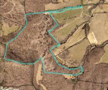 96.88 Acres M/L. In Calvary