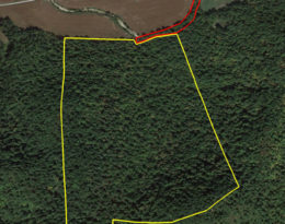 72.9 Acres Of Wooded Hunting Paradise
