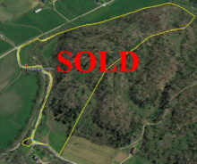 Sold – Wooded Paradise