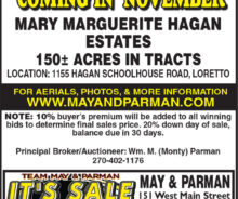 Absolute Auction – 150 Acres In Loretto