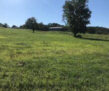 4.5 Acres With Barn and Pond